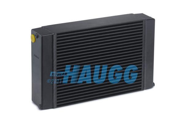 Haugg-2021-01-08