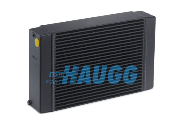 Haugg-2021-01-09